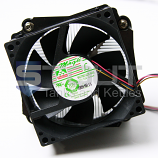 Heat Sink and Fan for Peltier System